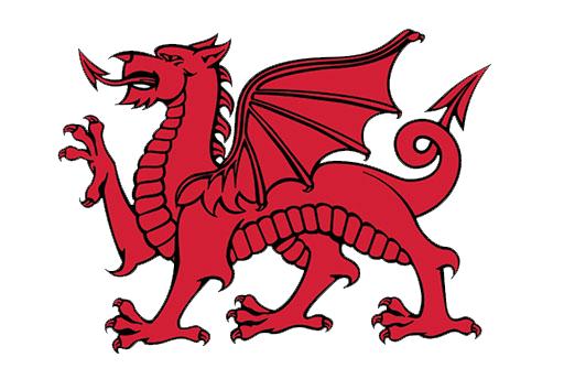 Local Dragon
